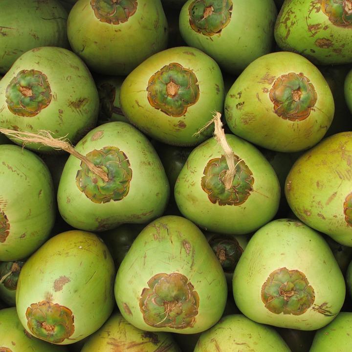 coconuts-331263_960_720